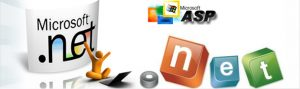 .Net Training In Delhi